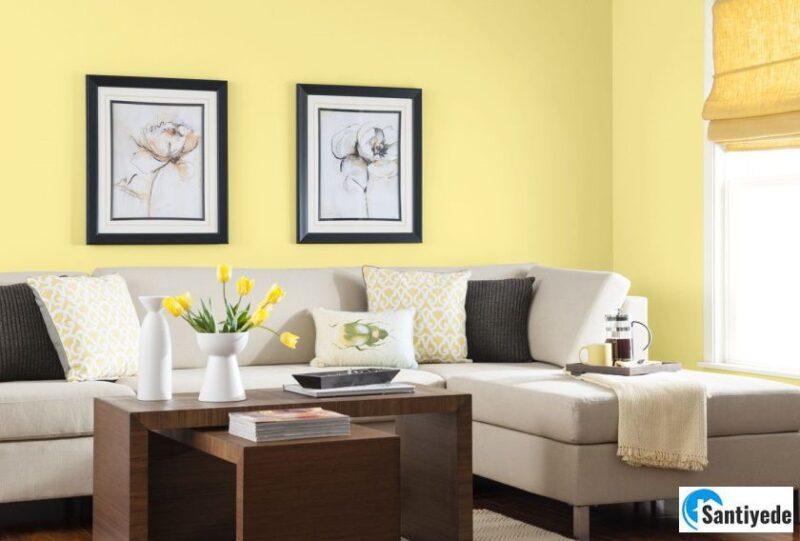 Sarı renk duvar boya renkleri