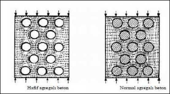 Hafif ve normal betonda gerilme dağılımlarının gösterimi