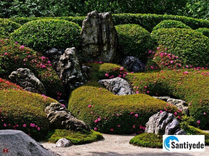 Japon kaya bahçesi - karesansui garden