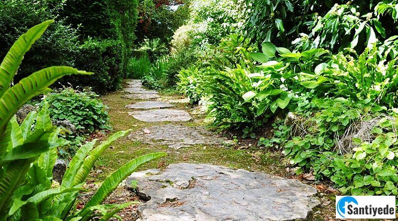 Bahçe Yolu Fikirleri ve Bahçe Yürüyüş Yolu Örnekleri