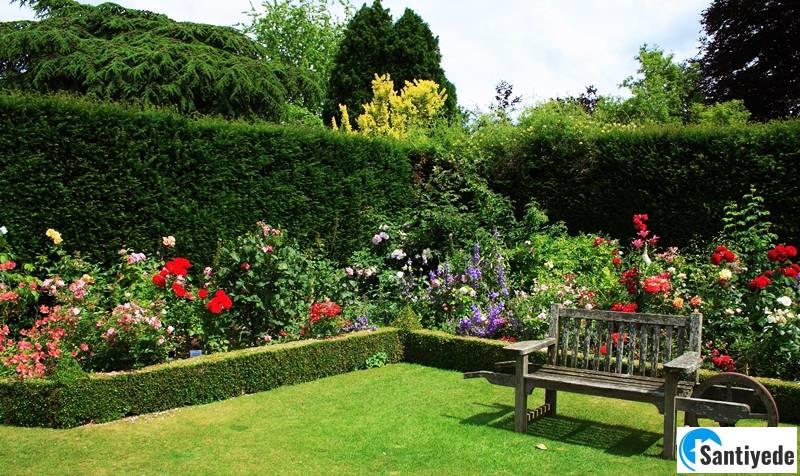 Villa bahçesi doğal çitVilla bahçesi doğal çit